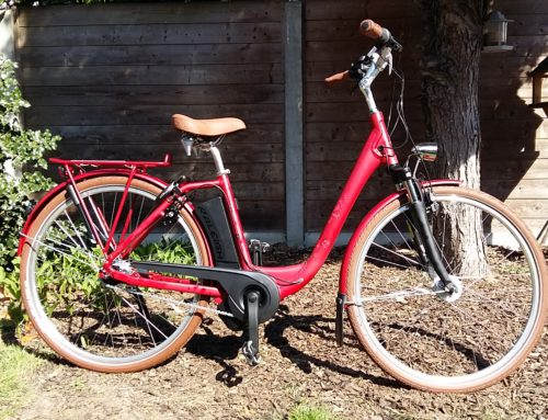 Raleigh Dover HS7 retro impulse middenmotor